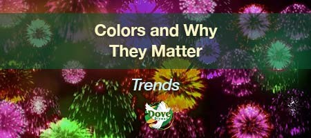 dove-direct-blog-colors-and-why-they-matter