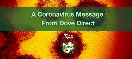 dove-direct-blog-A-Coronavirus-Message-From-Dove-Direct